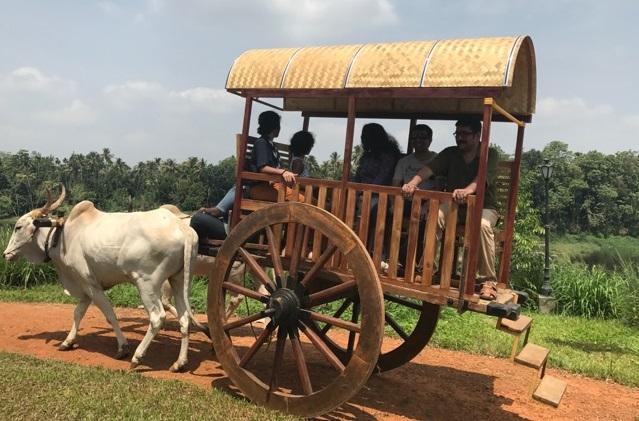 The incredible Bullock Cart ride at Rasa Gurukul